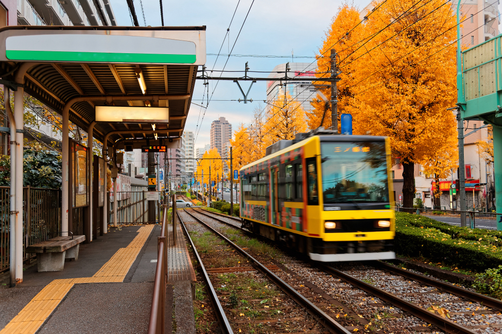 Sakura Tram