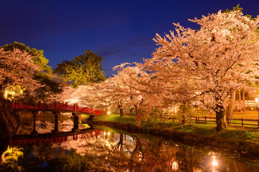 Le parc de Hirossaki (Aomori)