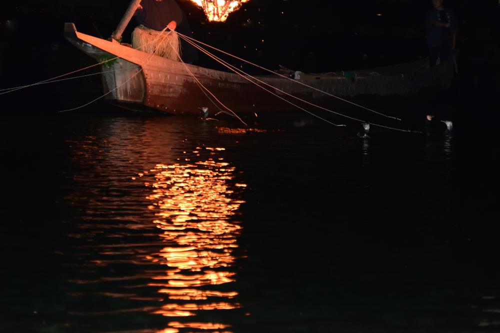 Ukai(pêche aux cormorants)
