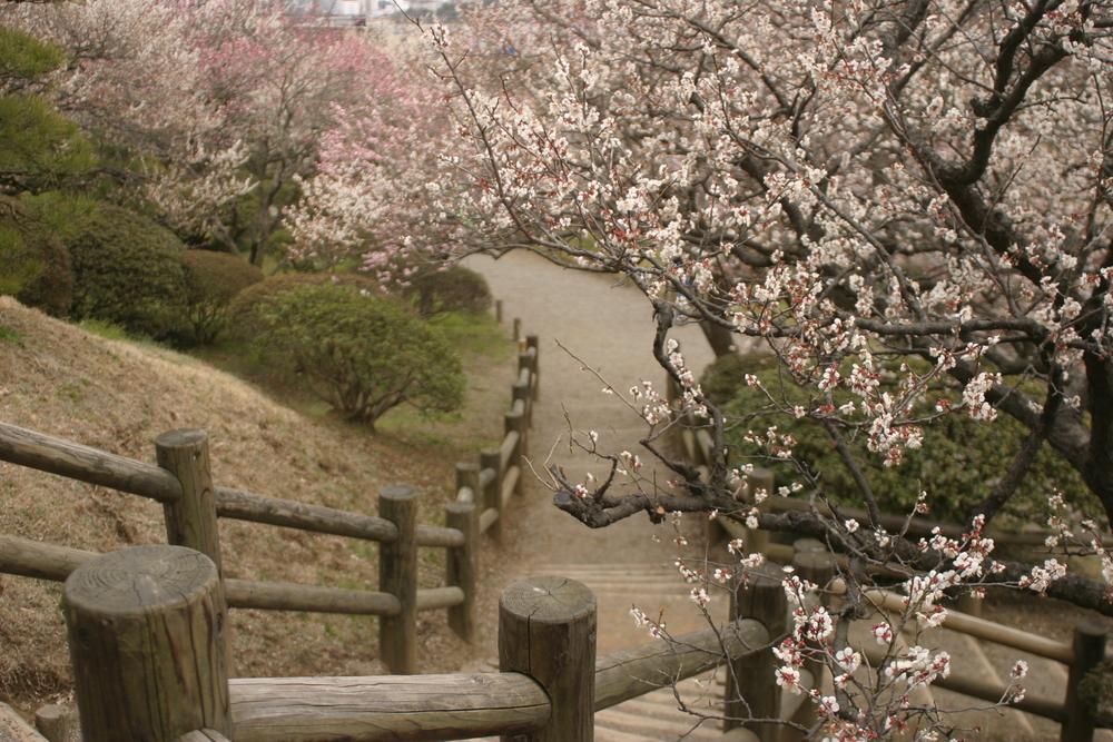 Parc de Kairakuen