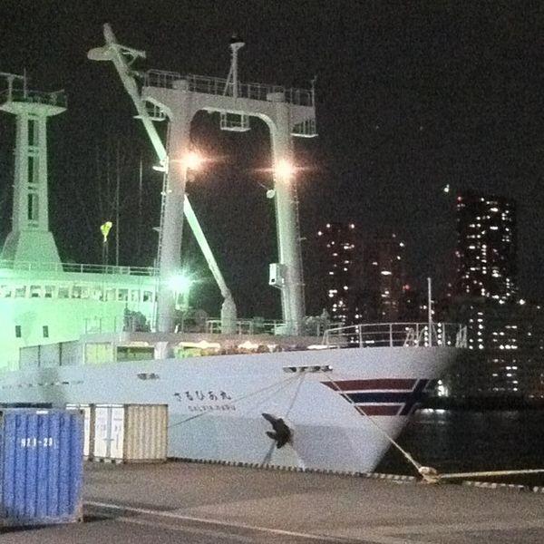 Night view of Sarubiamaru boat