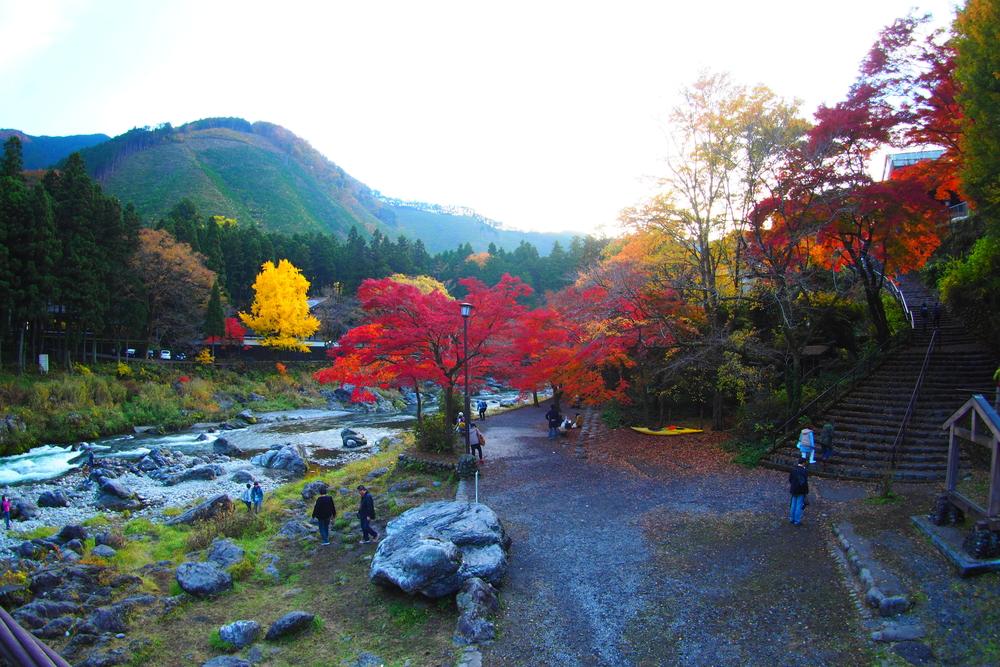 Gorge de Mitake