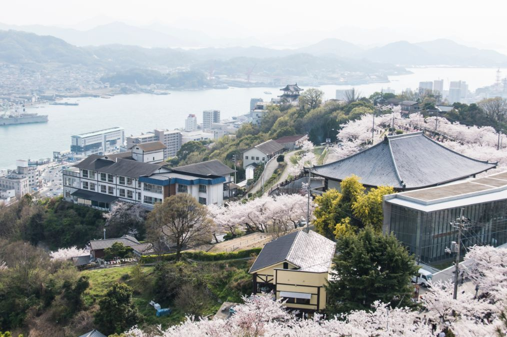 The Onomichi Art Museum surrounded by Cherry trees