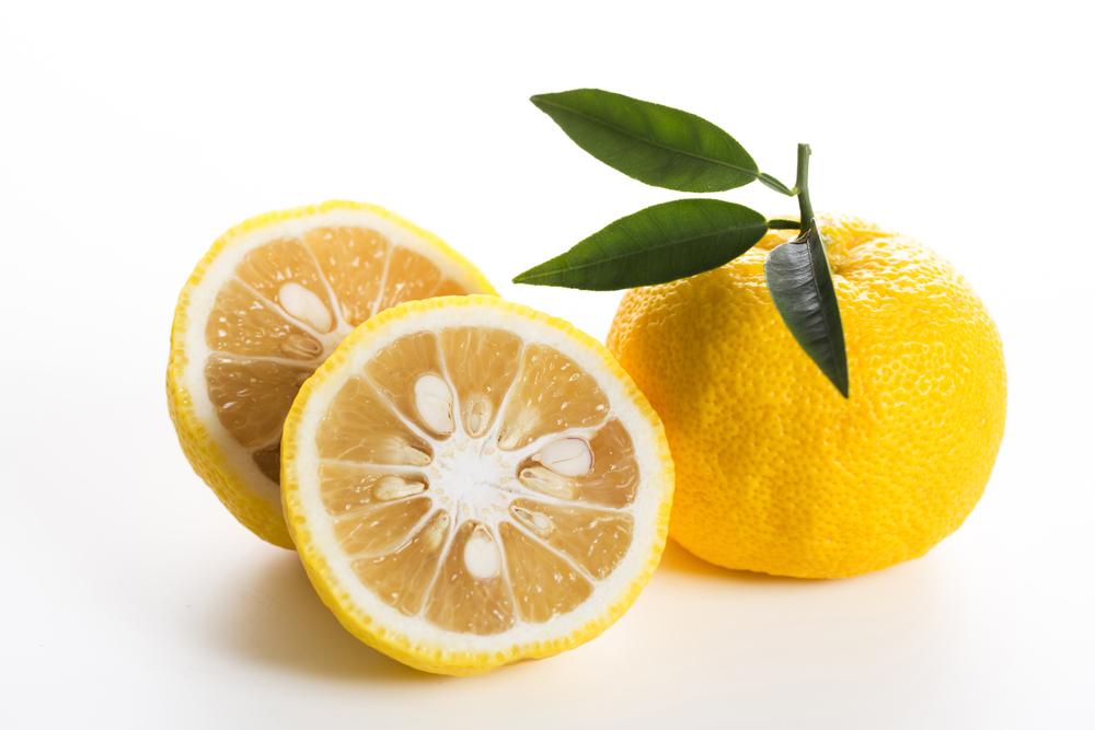 Citron japonais Yuzu