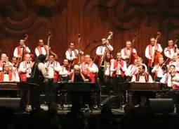 ミュージック・ワイン・ガラ・コンサート ブダペストで我を忘れる年末年始8日間