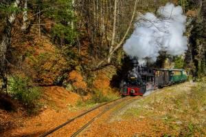 歴史を感じさせるトロッコ列車【ルーマニア情報】