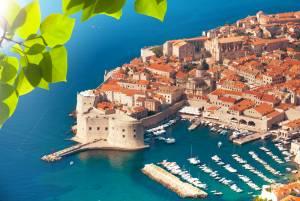 クロアチア観光/旅行【最新情報】クロアチアテレビ番組情報 岩合光昭の世界ネコ歩きmini