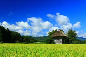 Travel to the heart of Japanese folklore in the mysterious town of Tono (Iwate)