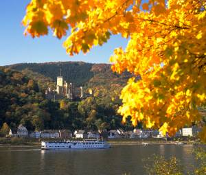 フランクフルトを拠点に秋のドイツ満喫