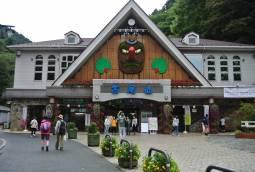 【日帰りプログラム】  高尾山でイングリッシュデイ 11月12日開催