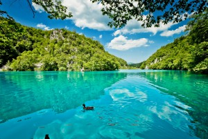 クロアチアテレビ番組情報 「プリトヴィツェ湖群国立公園」