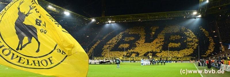 【新着ツアー】熱気と興奮!本場ドイツでサッカー観戦★欲張り2試合観戦
