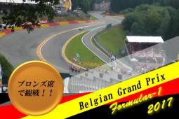 2018年8月 ベルギーF1(スパ)観戦★決勝のみ★ブロンズエリア 2泊3日