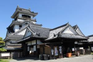 Kochi area, the cradle of the island of Shikoku