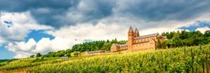 聖ヒルデガルト女子修道院の極上のワイン