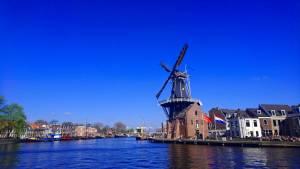 時間がなくても大丈夫!アムステルダムから程近い風車を見に行こう!