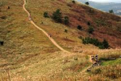 10/13-16 2泊3日 韓国トランス済州(チェジュ)100km・50km参加ツアー
