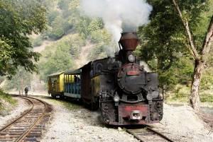 ヴァセル渓谷森林鉄道【ルーマニア情報】