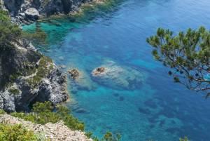 フランス観光を楽しもう!地方を巡る旅シリーズ●プロヴァンス地方●ポルクロル島