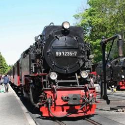 ヨーロッパの蒸気機関車好き集まれー! ~ 魔女伝説ハルツ地方のSL機関車とライン川の旅 7日間