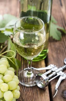 【ハイデルベルク発着】 ドイツの森の歩き方、ワインの街の古城レストランで地元ワインを楽しむ♪半日ツアー