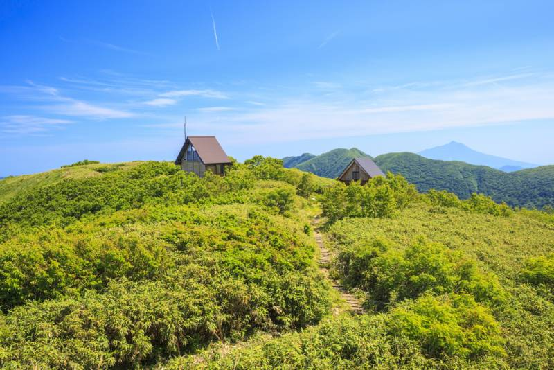 Discover the wild territory of the old japanese trappers