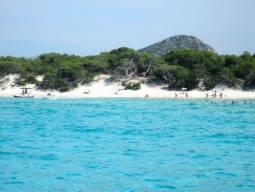 フランスの秘境コルシカ島を巡る4日間 2名様1室