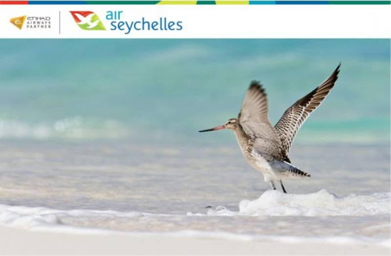 サンクチュアリ アイランド セイシェル バード島(Sanctuary  Bird Ialand at Seychells)