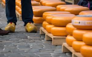 オランダ・三大チーズ市 ②ゴーダ