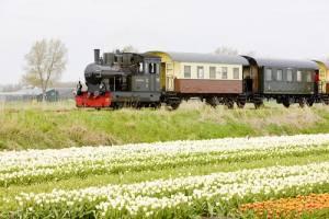 北ホランド州の花畑をSLで巡る旅