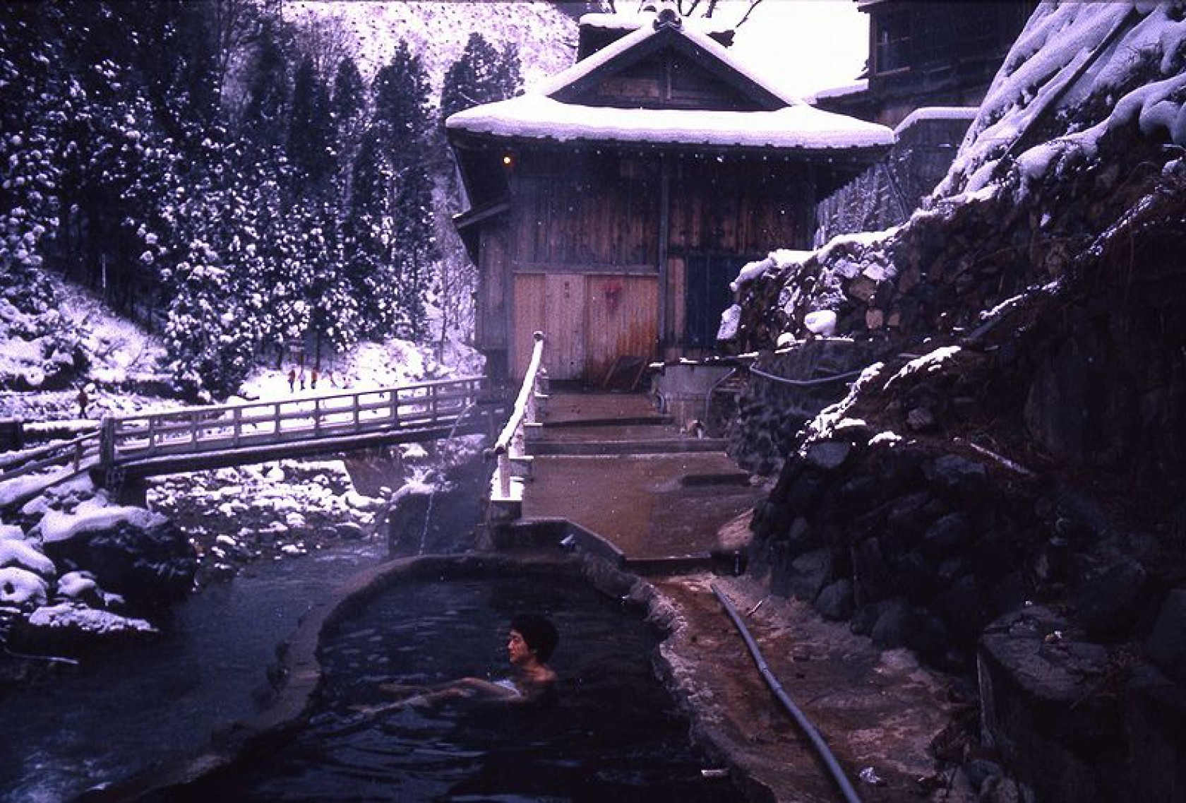 Winter in Japan: Bath with snow monkeys at a Japanese inn (Day trip ...