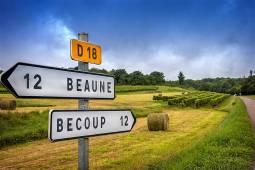 ブルゴーニュ ワインツアー|専用車でワイン街道を巡る
