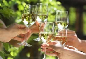 ドイツ各地のワイン祭り2018