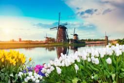 オランダ・ベルギー・フランスの世界遺産を巡るハネムーン(新婚旅行)♡ 10日間
