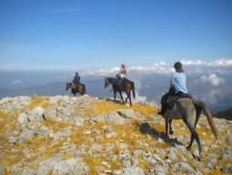 4月~6月、9月~11月【イタリア】シチリア島 地中海に浮かぶシチリア島の山をホーストレッキング!!(初心者から参加可能、騎乗日数4日間)