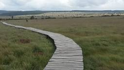 ベルギーの自然を満喫♪ボトランジュ自然公園ハイキング&ワロン地方巡り<日帰りツアー>