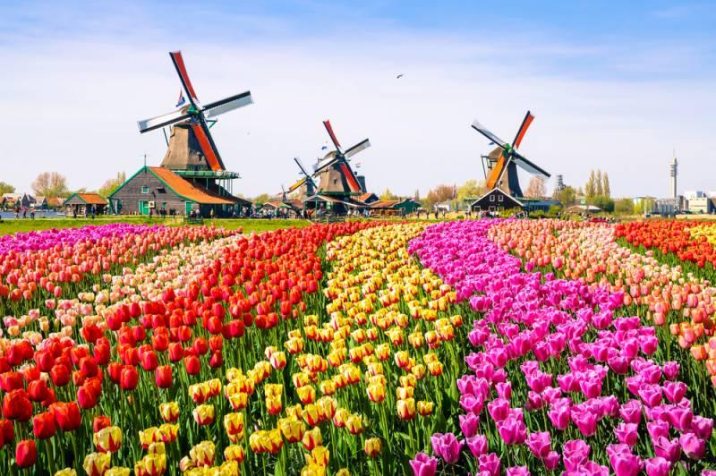 オランダ風車の日とは?