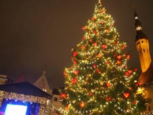 タリンのクリスマスマーケット【エストニア情報】