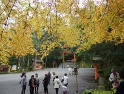 Paysages d'automne et détente à l'ouest du Japon