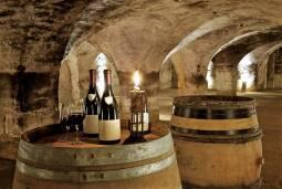 ブルゴーニュのドメインを巡る旅|ワインに詳しい日本人専用ドライバーがご案内