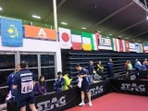 世界ベテラン卓球選手権2014 オークランド大会結果