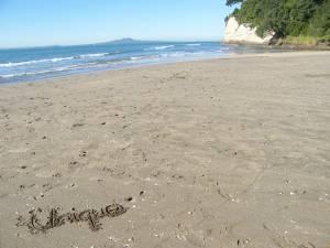 ニュージーランド短期留学についてのお知らせ