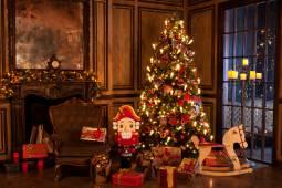 2017年12月 マリインスキーバレエ♪『くるみ割り人形』『パキータ』2公演鑑賞★ドイツで過ごすクリスマス5日間