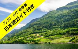 日本語ガイドのフィヨルド観光付き デンマークとノルウェー周遊7日間