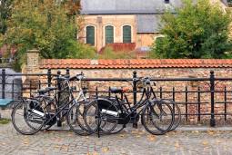風を切ってサイクリング♪水の都ブルージュから田舎町ダムへと続く並木道 ベルギーリフレッシュ旅 5日間