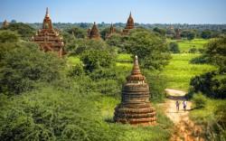 11/22-28 世界三大仏教遺跡 ミャンマー「バガン寺院」マラソン参加ツアー