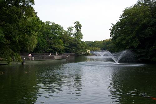 Le parc Inokashira