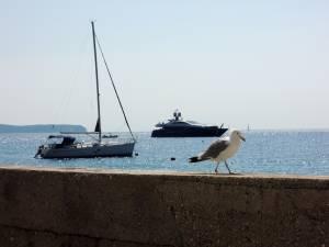 貸切ヨットでクロアチアを満喫 シニア世代のご夫妻