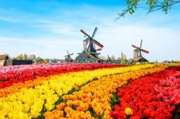 ベルギー&オランダ 2カ国周遊ツアー