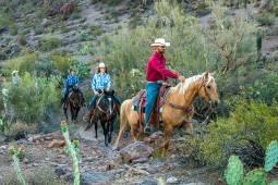 2月~12月(毎月2~5回開催)アメリカ|アリゾナ州 牧場ステイ!カウボーイ生活を満喫するツアー。